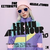 Berlin Afterhour, Vol. 10 (From Minimal to Techno / From Electro to House) - Various Artists