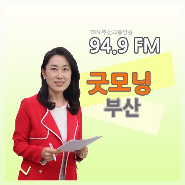 TBN 부산교통방송 굿모닝 부산