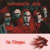 Nu Steppa (Radio Cut) - Single, Salmonella Dub
