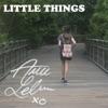 Little Things Single