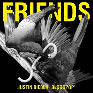JUSTIN BIEBER, BLOODPOP - FRIENDS