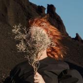 Silver Eye - Goldfrapp Cover Art