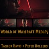 World of Warcraft Medley (feat. Taylor Davis) - Single, Peter Hollens