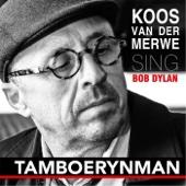 Koos Van Der Merwe - Tamboerynman artwork