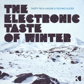 The Electronic Taste of Winter (Tasty Tech-House & Techno Slices)