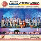 Zestre de folclor românesc Vol. II