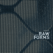 1 Year RAW FORMS