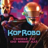 KopRobo - Chodź Tu Do Mnie Już artwork