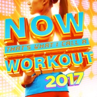 NOW That's What I Call a Workout 2017 MP3