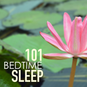 Bedtime Sleep 101 - Tracks for Deep Sleeping