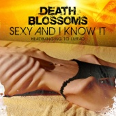 Death Blossoms - Work Hard Play Hard (Metal Mix) artwork