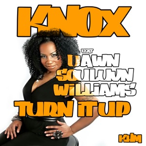 1. Knox - Turn It Up (feat. Dawn Soulovn Williams) [Knox & Wozniak Mix] [feat. Dawn Souluvn Williams]