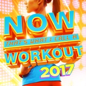 NOW That's What I Call a Workout 2017 - Various Artists Cover Art
