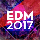 Edm 2017 - Various Artists