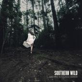 Southern Wild - Time Eraser kunstwerk