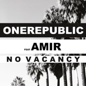 No Vacancy (feat. Amir) [French Language Version]
