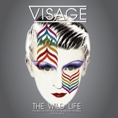 The Wild Life (The Best of Extended Versions and Remixes - 1978)