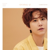 다시 만나는 날 Goodbye for now - KYUHYUN