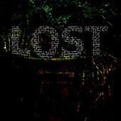 Lost - Mike Saigo