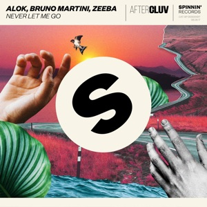 ALOK, BRUNO MARTINI, ZEEBA - NEVER LET ME GO