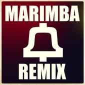 Marimba Megamix [Trap Hip Hop Twerk Bass]