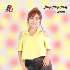 Download Lagu Desy Ning Nong – Diam MP3