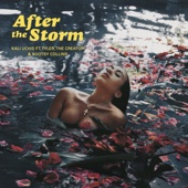 [Download] After The Storm (feat. Tyler, The Creator & Bootsy Collins) MP3