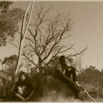 Chainsmokers Closer Jeene Laga Hoon - Single