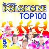 De Ultieme Polonaise Top 100 - Various Artists