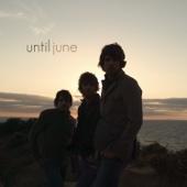 Until June - Sleepless artwork
