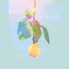 米津玄師 - Lemon アートワーク