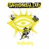 Tomfoolery (2017 Re-record) - Single, Salmonella Dub