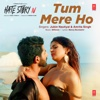 Tum Mere Ho From Hate Story Iv - Jubin Nautiyal, Amrita Singh & Mithoon mp3