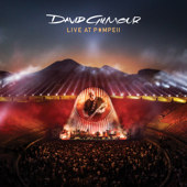 Comfortably Numb (Live at Pompeii 2016)