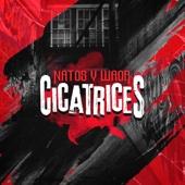 Cicatrices - Natos y Waor