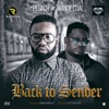 Back to Sender (feat. Wande Coal) - Single, Pesach