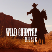 Wild Country Music: 2018 Best Selection, Wild Guitar Rhythms with Unique Instrumental Essence, Whiskey Country Band