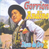 Llorare - Gorrion Andino