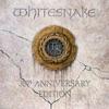 Whitesnake - Love Aint No Stranger  Live