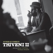 Triveni II (feat. Nasheet Waits & Omer Avital)