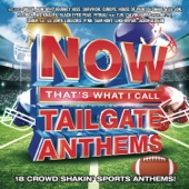Various Artists - NOW That's What I Call Tailgate Anthems  artwork