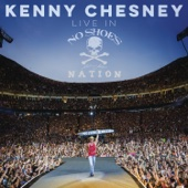 Kenny Chesney - Live in No Shoes Nation  artwork