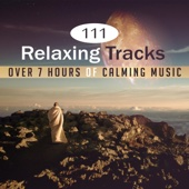 111 Relaxing Tracks: Over 7 Hours of Calming Music, Deep Zen Ambient, Meditation Music, Inner Peace Zone, Yoga, Spa, Massage