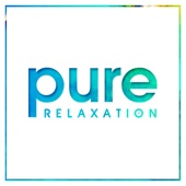 Pure Relaxation - Various Artists
