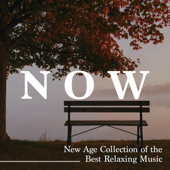 Now - New Age Collection of the Best Relaxing Music, Feel at Home Now, Nature Sounds and Piano Melodies