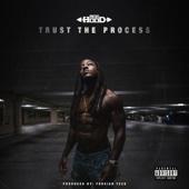 Ace Hood - Trust the Process  artwork