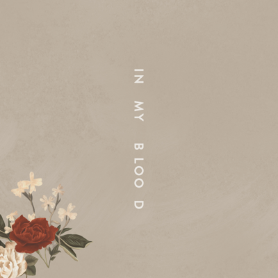 In My Blood - Shawn Mendes song