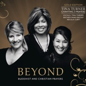 Tina Turner, Dechen Shak-Dagsay & Regula Curti - Beyond (Gold Edition) artwork