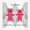 Download Lagu Marshmello & Anne-Marie - FRIENDS