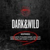Dark & Wild, BTS